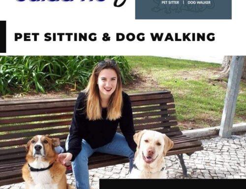 PET SITTING & DOG WLKING